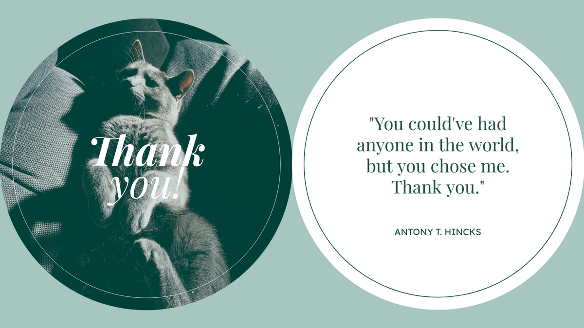 Twitter Post template: Cat Photo Thank You Quote Twitter Post (Created by InfoART's Twitter Post maker)