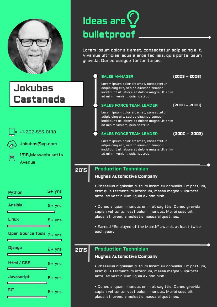 Resume template: Cyber Resume (Created by InfoART's Resume maker)