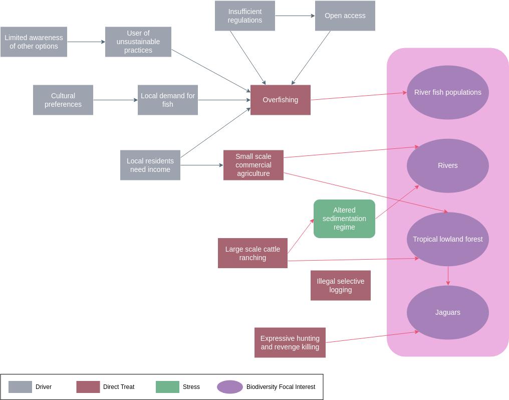 Overfishing Problem Flowchart (Problem Flow Diagram Example)