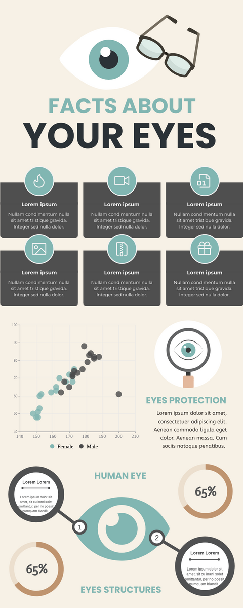 Infographic template: Facts About Your Eyes Infographic (Created by InfoART's Infographic maker)