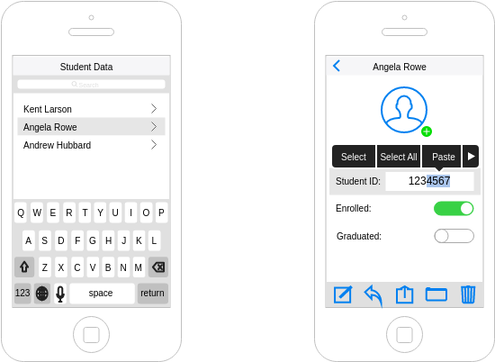 IOS Wireframe template: Student Data (Created by Diagrams's IOS Wireframe maker)