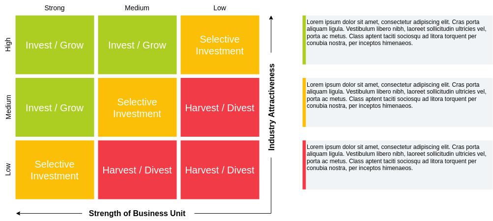 GE McKinsey Template (GE McKinsey Matrix Example)