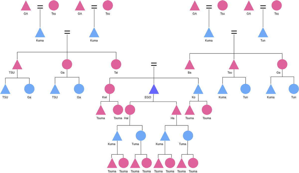 Kinship Case Study (Kinship Diagram Example)
