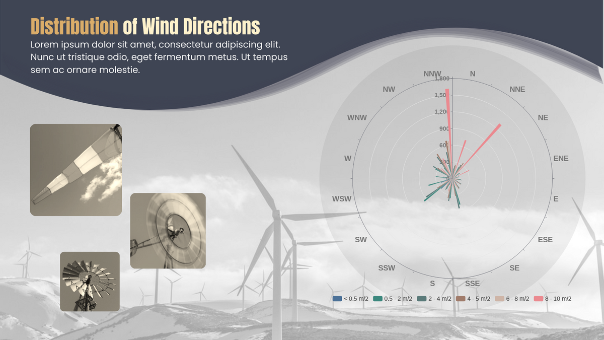 Rose Chart template: Distribution of Wind Directions Rose Chart (Created by Chart's Rose Chart maker)