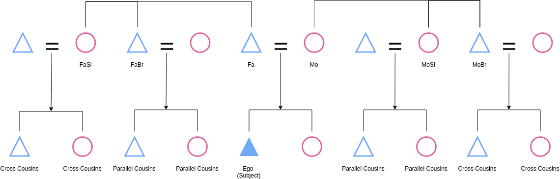 Cousin Kinship (Kinship Diagram Example)