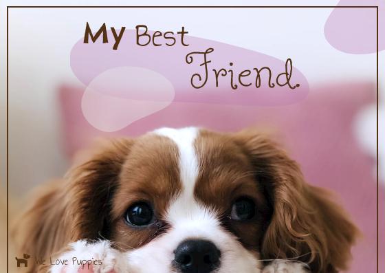 Postcard template: My Best Friend Postcard (Created by InfoART's Postcard maker)