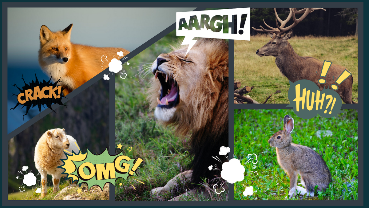 Comic Strip template: Animals Stories Comic Strip (Created by Collage's Comic Strip maker)