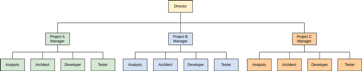 Project-Based Organizational Template (Organization Chart Example)