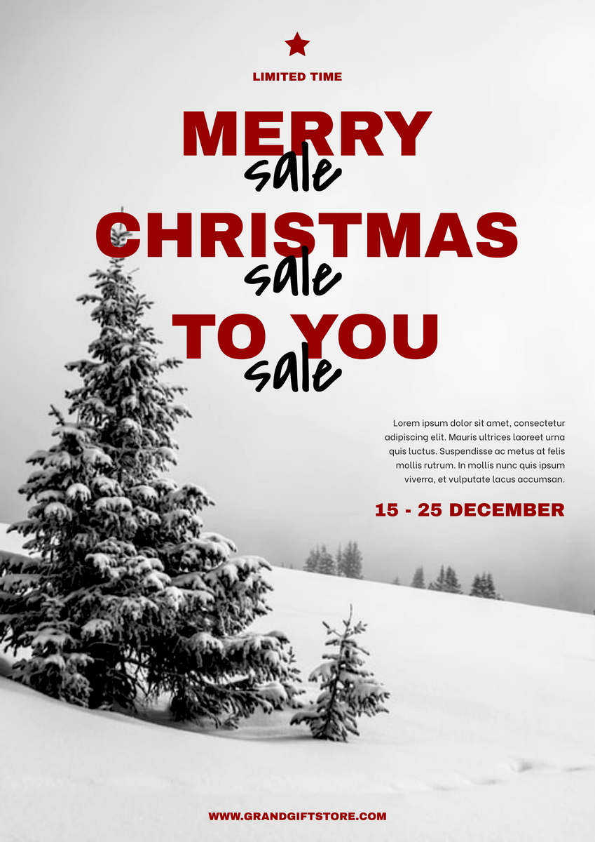Poster template: Snow Christmas Photo Shopping Sale Poster (Created by InfoART's Poster maker)