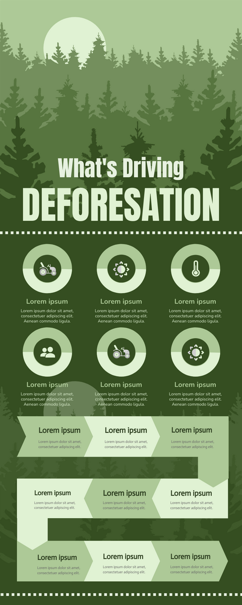 Infographic template: Deforestation Infographic (Created by InfoART's Infographic maker)