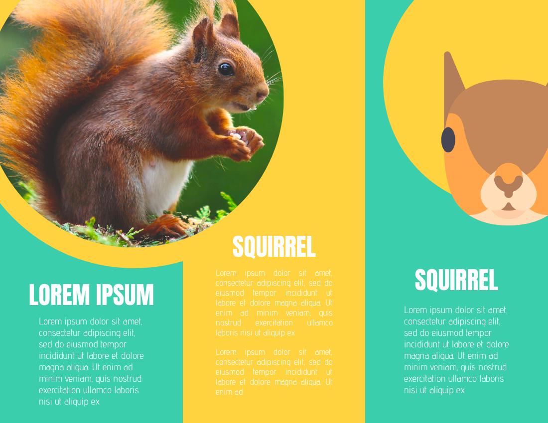 Brochure template: Squirrel Poster (Created by InfoART's Brochure marker)
