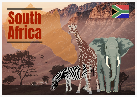 Postcard template: South Africa Postcard (Created by InfoART's Postcard maker)