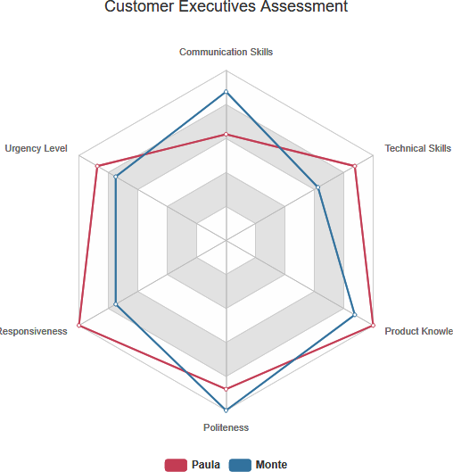 Radar chart example: Customer executives assessment