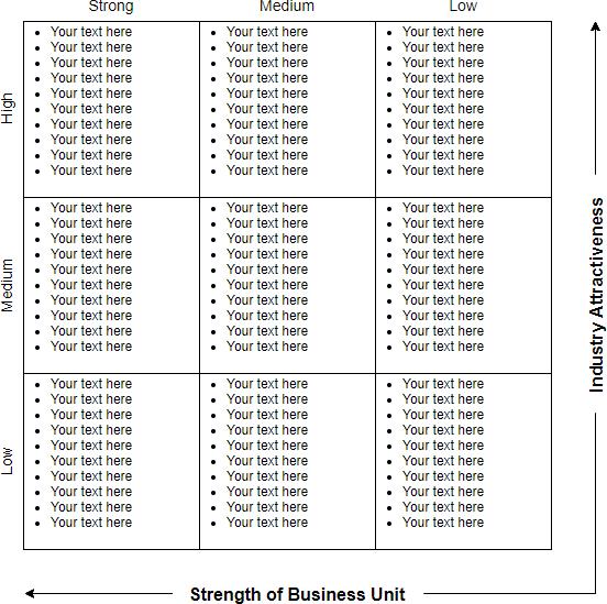 GE McKinsey Matrix with text