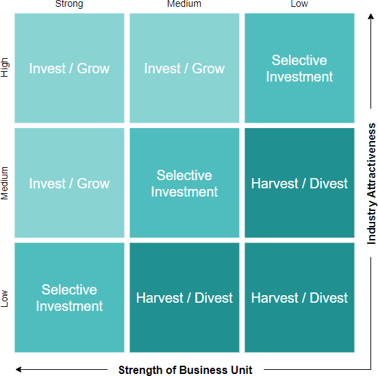 GE McKinsey model template