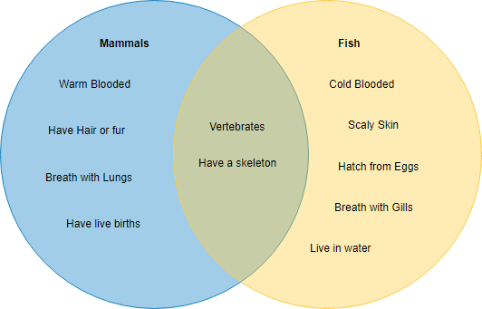 Venn diagram example mammals and fish